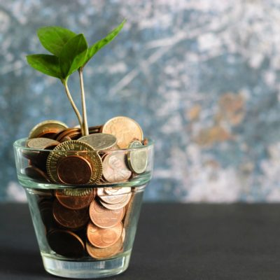 coins with growing plant